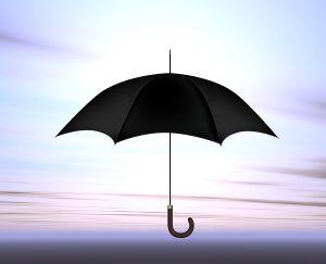 Personal Umbrella Agent Palmer or Wasilla, AK